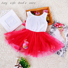 Hot Sell Baby Kids Girls Dress Princess Pageant Party Tutu Dress Lace Bow Flower Tulle dress