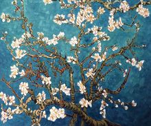 Vincent Van Gogh Hand painted Oil painting Canvas Reproduction art Branches with Almond Blossom for living room bedroom Decor