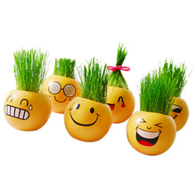 New Style Ceramic Cartoon Emoji Print Flower Pot with Magic Grass Plant Pot Grass Seed Wholesale 6 Patterns