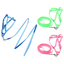 Nylon Dog Harness with leash lead For Small Medium Dogs Harness Set Pet Supplies  New Green Blue Pink 3 Color