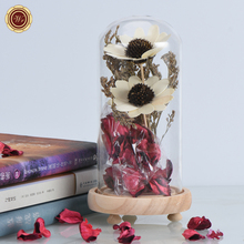 WR Real Dried Flower In Glass Cover For Home Decor Beautiful White Flower with Red Rose Petal Valentine's Day Gifts(China)