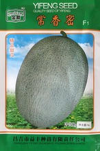 Fruit seeds Forever Fragrant Dense cantaloupe Dense Sweet Melons Green tangerine peel melon 90 days Harvest 25 grams/bag(China)