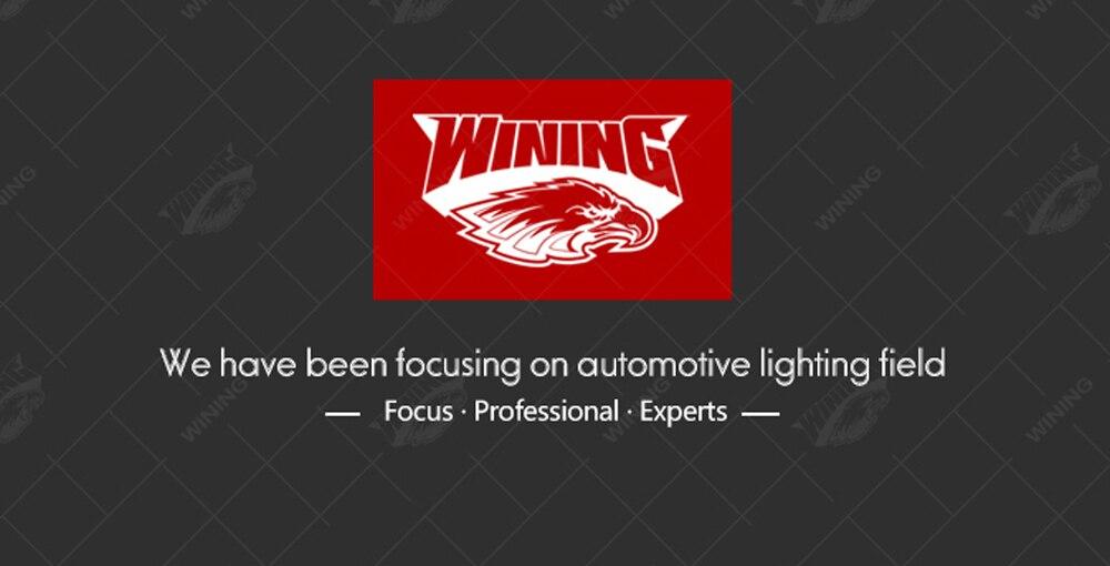 focus,professional,expert