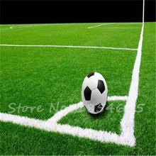 1000pcs Lawn Turf Seed Grass Seeds Fresh Green Soft Runner Turfgrass for home park soccer golf place free shipping