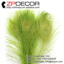ZPDECOR 50pcs/lot 25-30cm(10-12inch) Hand Select  Light Green Dyed Peacock Feathers For Party Festival Supplies DIY Craft