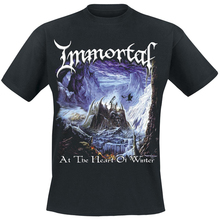 Free shipping IMMORTAL At The Heart Of Winter SHIRT M L XL Black Metal T-Shirt NEW(China)