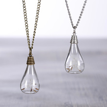 Fashion Creative Antique Bronze Glass Vial Perfume Bottle The built Natural Dandelion  Dandelion Seed Plant Necklaces