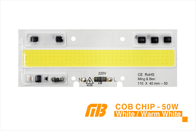 COB CHIP_03