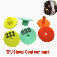 Sheep Identification Card Goat Cattle Pig Rabbit Ear Sign Geeen Orange Yellow No.1-100 Rabbit Goat Tools Animal ID Laser Typing(China)