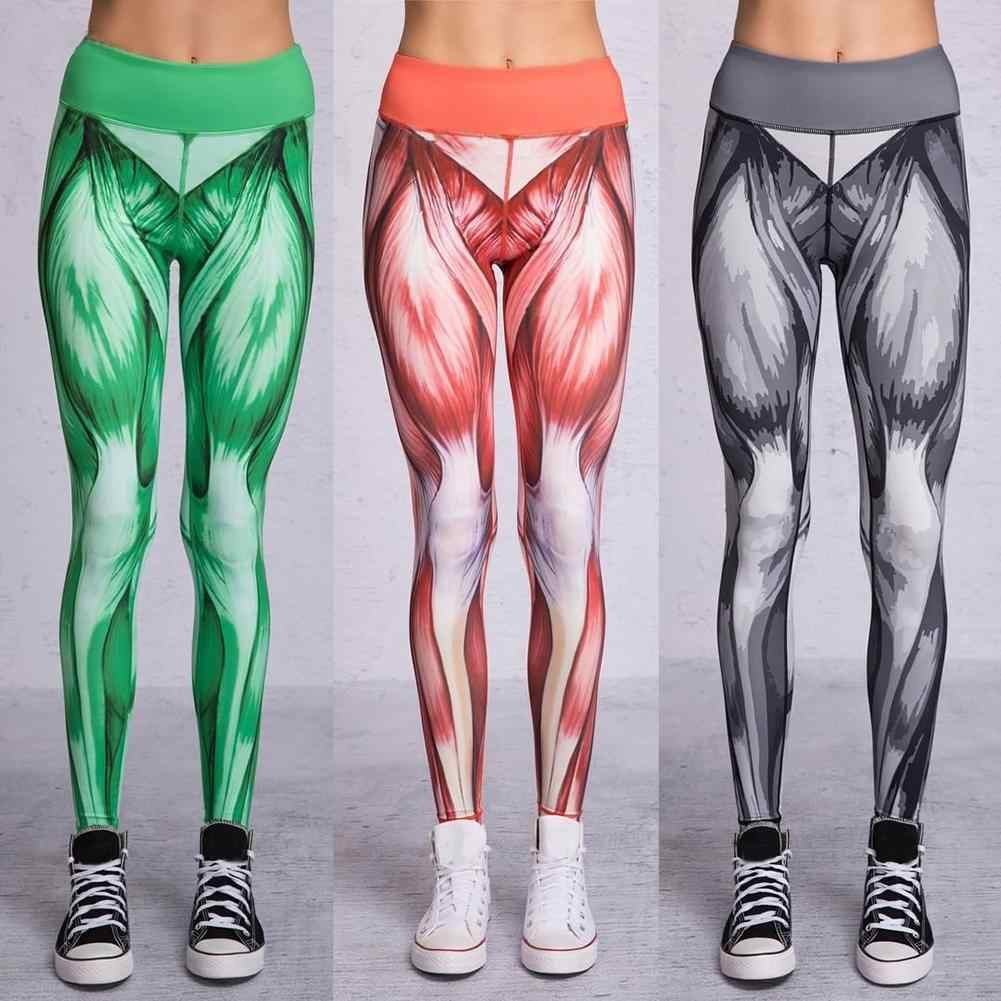 122b08ae235a16 Detail Feedback Questions about Sports Women Legging Muscle Structure Print  Leggings High Waist Pants Long Trousers on Aliexpress.com   alibaba group