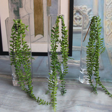 Artificial Succulents Pearls Fleshy Green Vine Flower Hanging Rattan Wall Artificial Flower Lover Tears succulent plants