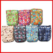 Baby Cloth Diaper Babyland Papoose Diapers 10pcs+10pcsMicrofiber inserts Onsale(China)