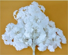 300pcs White Wedding Props Road Flower Stage Background Decoration Flower White Artificial Ginkgo Biloba White Leaves wa3356