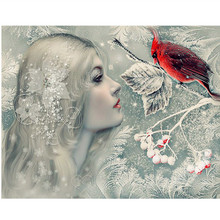 DIY Square Diamond Painting Cross Stitch Kits girl Diamond Mosaic red bird crystal Diamond Embroidery snow Patterns Rhinestones