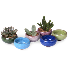 WITUSE Mini Maceta Garden Plants Ceramic Pot Planters Decorative Flower Pots For Flower Succulents Ice-Crack Patten Flowerpot(China)