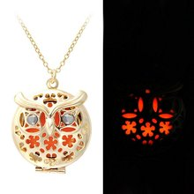 Owl Necklace Glowing Fairy Necklace Magic Round Glow in the Dark Charm Pendant Necklace(China)