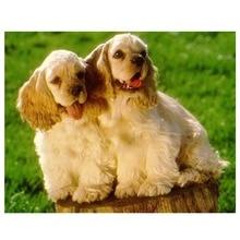 Сделай Сам алмаз Вышивка животные собака, полный 5D Вышивка с кристаллами пудель, мозаика ремесел ромба Home Decor(China)