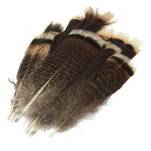 10Pcs Overvalue Decor Natural Precious Wild Turkey Feathers Size 6-8 Inches Pheasant Plumage Quill Feather Caps Accessories