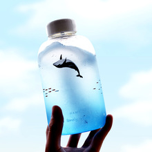 Fresh Sea Whale Pattern Handmade Glass Water Bottle with Storage Bag Cute Ice Bottle Morning Glass Bottle SH145-119