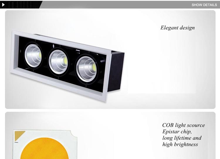 COB spot light (12)