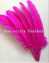 Wholesale 30pcs Per Set fuschia Goose Feathers Turkey feather Home Celebrity Decoration 30cm Accessory for hair extension