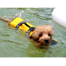 Pet Dog Life Jacket Safety Clothes for Pet Puppy Life Vest Outward Saver Swimming Preserver Large Dog Clothes Summer Swimwear