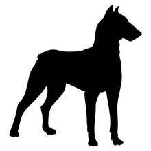 10.2*9.5CM Doberman Dog Vinyl Decal Reflective Car Stickers Car Styling Bumper Decoration Black/Silver S1-1086(China)