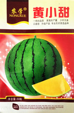 Fruit seeds Huang Xiaotian watermelon seeds Yellow heart fewer seeds without slag Early maturity, s very sweet 50 / package