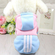 Pet Fashion Sport Hoodie Autumn and Winter Dog Cat Clothes Brand Small Dog Coat for Cats Chihuahua Fashion Printed Cat Puppy(China)