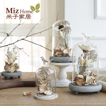Miz Home 1 Set Terrarium Seal Flower Vase Terrarium Succulents Plant Home Decor Gift Micro Landscape Cover and Filler