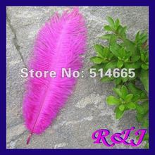 "Wholesale 50PCS 16-18"" 40-45cm fushia OSTRICH drab FEATHER real ostrich plumage Free Shipping(China)"