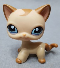 Genuine Original Littlest Cat Figure #1024 Caramel Swirl Curl Brown Tan Blue Eyes Collect Pet Toys Loose Doll Shop for Kids(China)