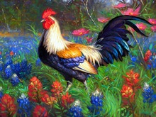 Diamond Painting Animals Cock Painting  Diamond Painting Colour Picture Cross Stitch Stone Picture 3d Wall Painting Puzzle