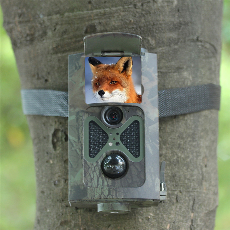 Wildlife Trail Camera 5