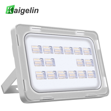 High-quality 10W 20W 30W 50W 100W LED Flood Light US 110V Floodlight Waterproof LED Spotlight Outdoor Lighting 2 Emitting Colors(China)