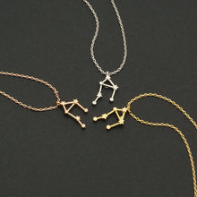Daisies One Piece Pendant Necklace Zodiac Sign Constellation Signs Necklaces For Women 12 Constellation Jewelry(China)