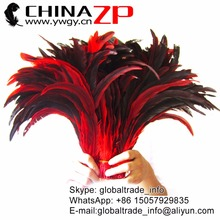Leading Supplier CHINAZP Factory 100pieces/lot 30~35cm(12~14inch) Length Top Quality Dyed Red and Natural Rooster Tail Feathers(China)