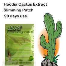 (90 days use) Pure Hoodia Cactus extracts slimming belly patch diet pad lose weight fast for men & women(China)