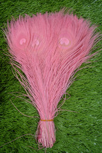 New! Free Shipping Sale 50 pcs / lot beautiful  pink peacock tail feathers 10-12 inches Wedding, Party, Home.