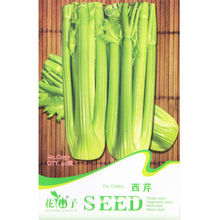 Celery Seed * 1 Packet 40 Seeds * Apium graveolens var. dulce * Vegetable seeds kitchen garden * Non GMO Seed * Free Shipping