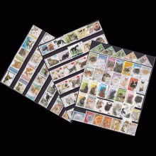 50 PCS / lot all different  Topic Animal  Cat Unused Postage Stamps With Post Mark For Collecting postal stampel