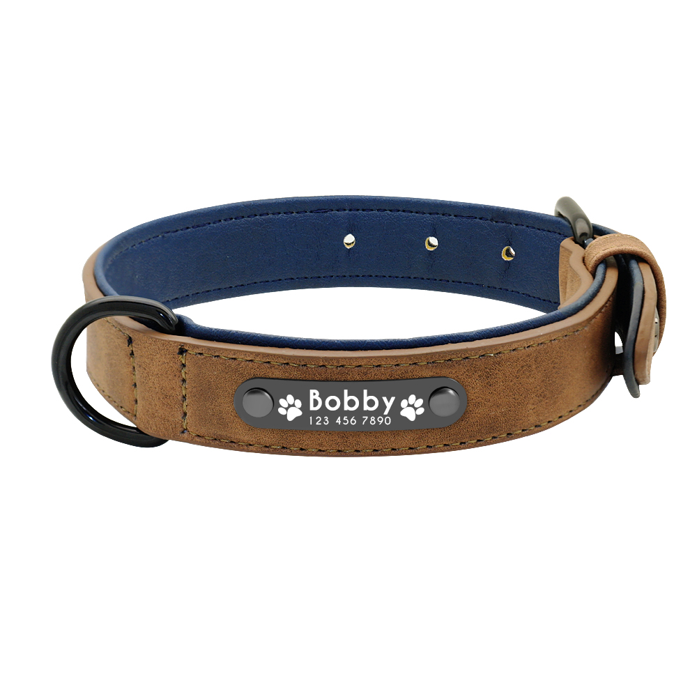 Dog Collar with Name Product Image 14