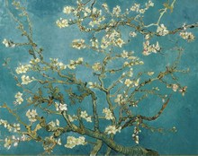 Canvas Art Picture Print Painting Blossoming Almond Tree Oil Painting Of Van Gogh Reproduction Wall Art Picture for Home Decor(China)