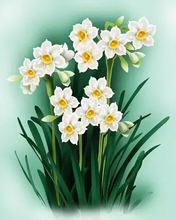 47X57cm DIY Full Drill Diamond Painting Cross Stitch Fresh daffodils Printed Draw Picture Round Rhinestones Embroidery