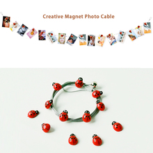 2pcs 3M High Quality Silver Magnetic Cable Photo With 16 cartoon ladybird Image Magnet Decoration Bedroom Babyshower(China)