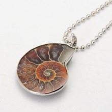 Ammonite Fossils Necklace Silver Ammonite Swirl Necklace Snail Necklace Amonite Jewelry Fossils Jewelry Bohemian Necklace(China)