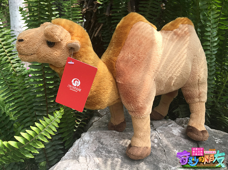 High Quality 22cm Simulation Stuffed Bactrian Camel Doll Plush Toy Simulation Animals Toys Childrens  Gifts<br>