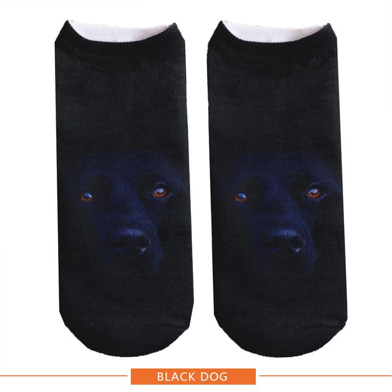 BLACK DOG 800