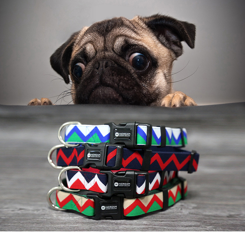 Outdoor Nylon Dog Collars Mascotas Pet Dogs Neck Straps Puppy Led Dog Collar Strong Colorful Wave 40-62CM Adjustable HD002004 (1)