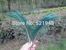 20pcs 30-35cm/12-14inch Peacock Sword Feather Natural Green Iridescent Left & Right(China)